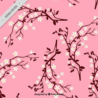 Hand drawn pink background of cherry blossom