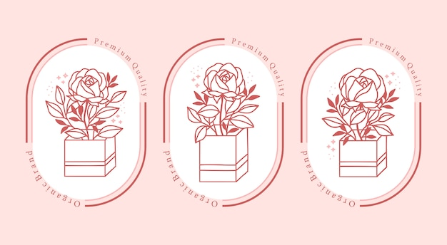 Hand drawn pink botanical rose flower element collection for feminine beauty logo
