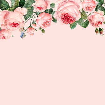 Hand drawn pink roses frame on pastel pink background vector