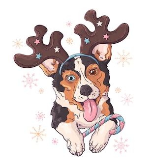 クリスマスアクセサリーでコーギー犬の描かれた肖像画を手します。