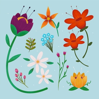 Коллекция рисованной красивых цветов