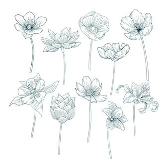 手描きのかわいい花のコレクション
