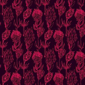 Hand drawn protea seamless pattern