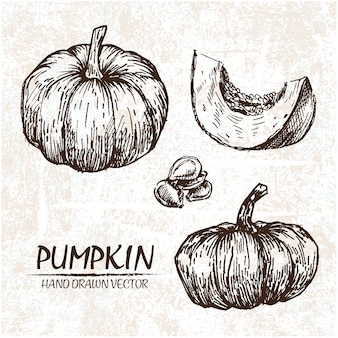 Hand drawn pumpkin design