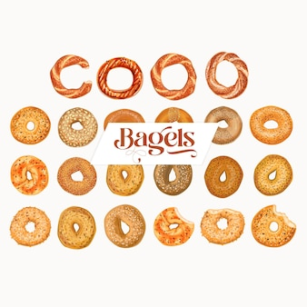 Hand drawn realistic bagel and simit