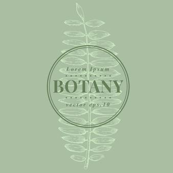 Hand drawn retro fern. botanical vector banner template