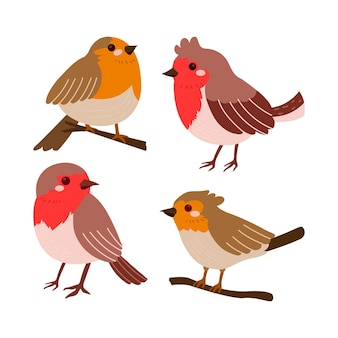 Hand drawn robin collection