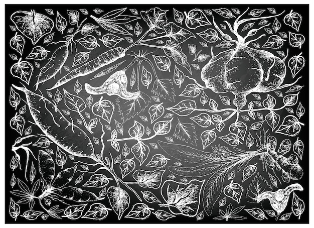 Hand drawn of root and tuberous vegetables on chalkboard