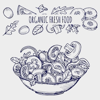 Hand drawn salad bowl and vegetables healhty food illustration