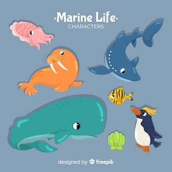 Hand drawn sea animals collection