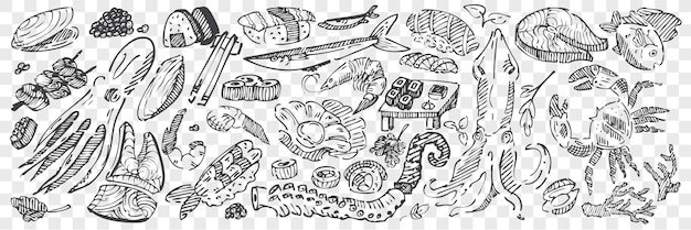 Hand drawn sea food doodle set. collection of pencil chalk drawing sketches of sushi lobster squid caviar mussels octopus and ocean fish on transparent background. exotic marine dishes illustration.