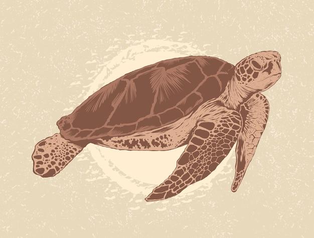 手描きのウミガメのイラスト