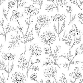 カモミールの花で描かれたシームレスパターンを手します。