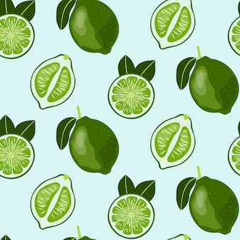 Hand drawn seamless pattern with lime fruit.