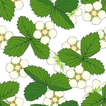 イチゴの花と葉で描かれたシームレスパターンを手します。