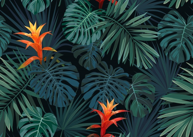 Hand drawn seamless tropical floral pattern with guzmania flowers, monstera and royal palm leaves. exotic hawaiian.