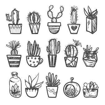 Набор рисованной кактусов в горшках.