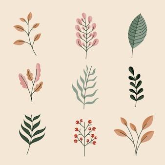 葉の手描きセット