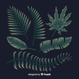 Hand drawn set of tropical leaves