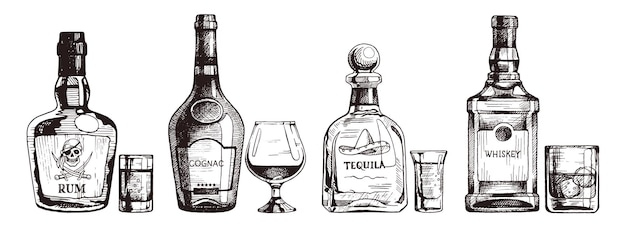 Hand drawn set of strong alcoholic drinks. bottle of rum, cognac, tequila, scotch whiskey.  illustration, ink sketch.
