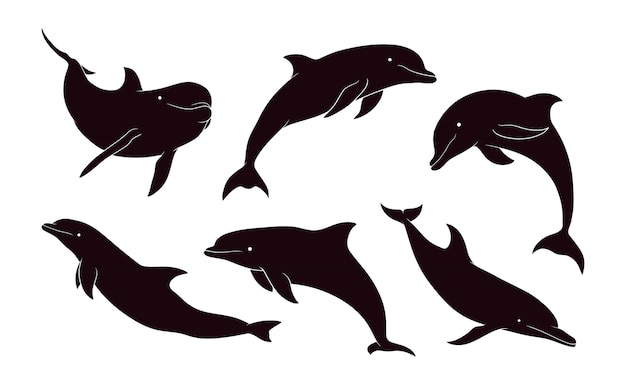 Hand drawn silhouette of dolphin