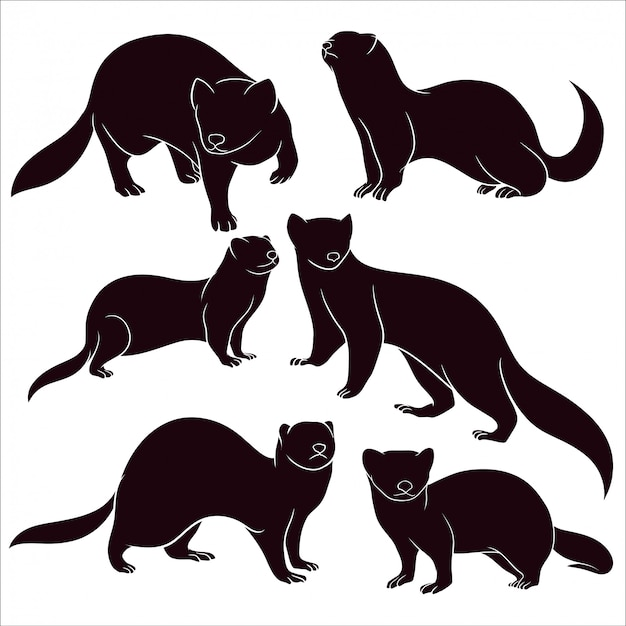 Hand drawn silhouette of ferrets