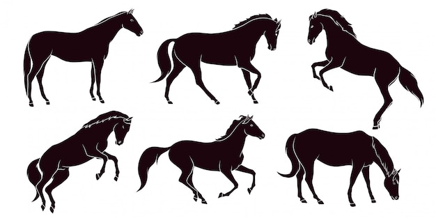 Hand drawn silhouette of horse