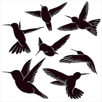 Hand drawn silhouette of hummingbird
