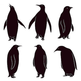 Hand drawn silhouette of penguin