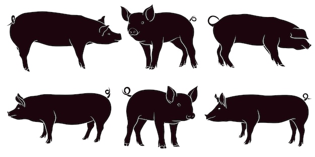Hand drawn silhouette of pig