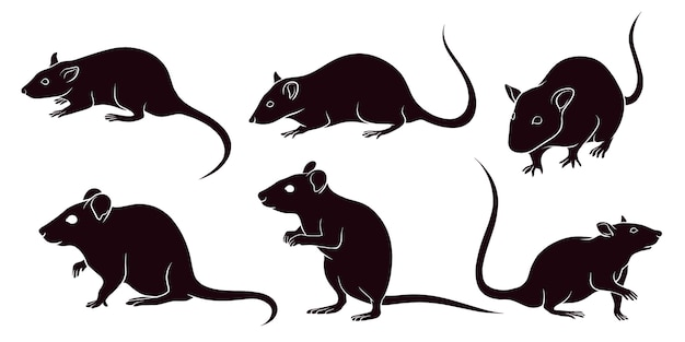 Hand drawn silhouette of rats