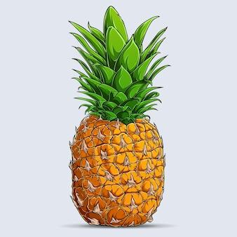 白い背景で隔離の手描きの単一の丸ごと新鮮なパイナップル