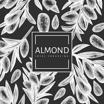 Hand drawn sketch almond design. organic food illustration on chalk board.