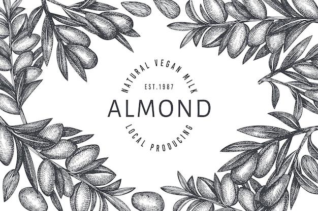 손으로 그린 된 스케치 아몬드 디자인 서식 파일입니다. 유기농 식품 그림입니다. 레트로 너트 그림입니다. 새겨진 스타일 식물 배경.