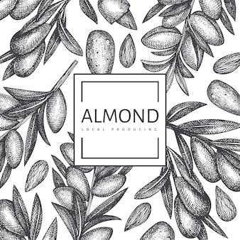 Hand drawn sketch almond design template. organic food  illustration. retro nut illustration.