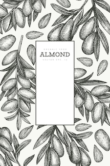 Hand drawn sketch almond design template. organic food vector illustration. retro nut illustration. engraved style botanical background.