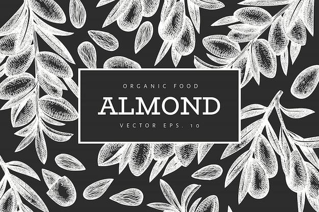 Hand drawn sketch almond design template.