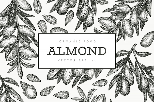Hand drawn sketch almond design