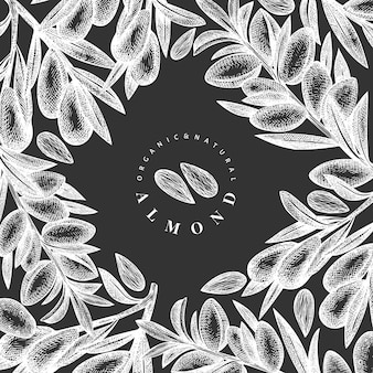 Hand drawn sketch almond  template. organic food  illustration on chalk board. vintage nut illustration. engraved style botanical background.
