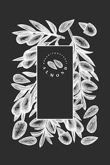Ручной обращается эскиз миндального шаблона. иллюстрация органических продуктов питания на доске мелом. винтажная иллюстрация ореха.