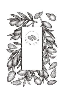 손으로 그린 된 스케치 아몬드 템플릿입니다. 유기농 식품 그림입니다. 레트로 너트 그림입니다. 새겨진 스타일 식물 배경.