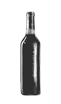 Hand drawn sketch of a bottle of wine
