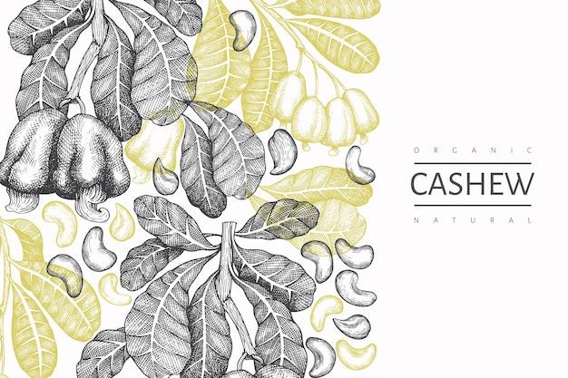 手描きスケッチカシューデザインテンプレート。白い背景の上の有機食品ベクトルイラスト。ヴィンテージナッツのイラスト。刻まれたスタイルの植物の背景。