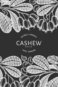 Hand drawn sketch cashew. organic food on chalk board.