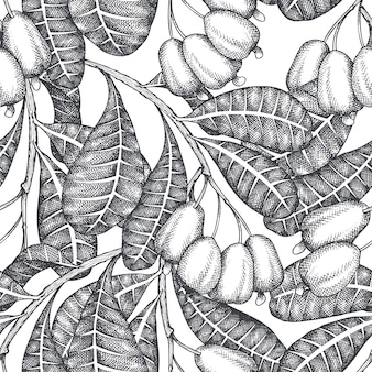 Hand drawn sketch cashew seamless pattern. organic food  illustration on white background. vintage nut illustration.