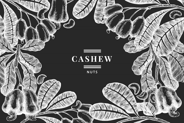 Hand drawn sketch cashew  template. organic food  illustration on chalk board. vintage nut illustration.