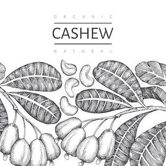 手描きスケッチカシューテンプレート。白い背景の上の有機食品のイラスト。刻まれたスタイルの植物の背景。