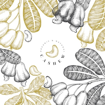 Hand drawn sketch cashew  template. organic food  illustration on white background. vintage nut illustration.
