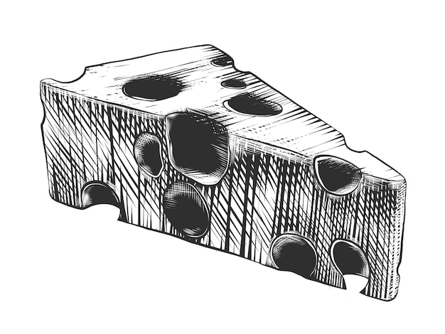 Hand drawn sketch of cheese in monochrome
