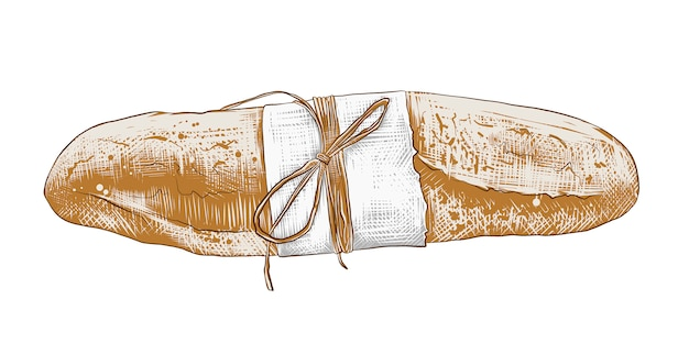 Hand drawn sketch of colorful french baguette